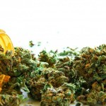 More Countries approve Medical Marijuana in Europe