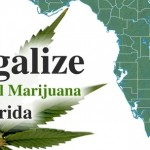 legalize-medical-marijuana-in-florida-thcfinder